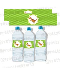 Dinosaur theme Water Bottle Labels