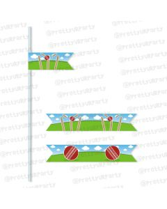 cricket theme straws