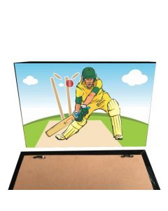 Cricket Theme Pinboard