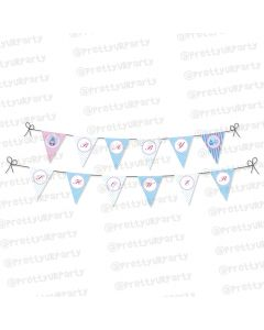Pink and Blue baby shower Bunting