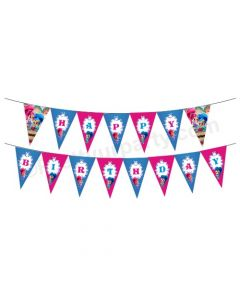 Shimmer and Shine Theme Bunting